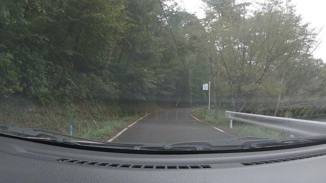 山城町森林公園の山道