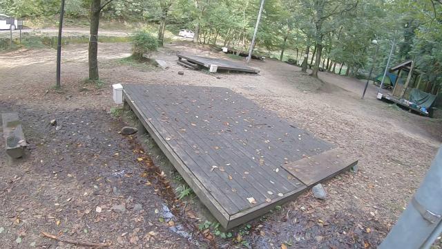 山城町森林公園の落ち葉