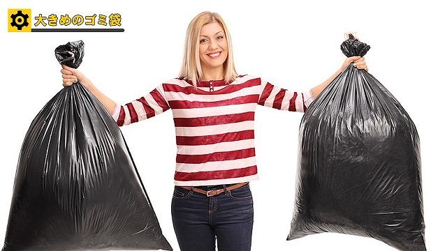大きめのゴミ袋